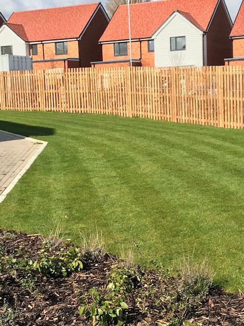 Supply and Install of Hit and Miss Fencing in Kent